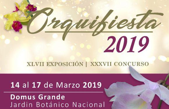 Fwd: Las orquídeas estarán de fiesta en el Jardín Botánico
