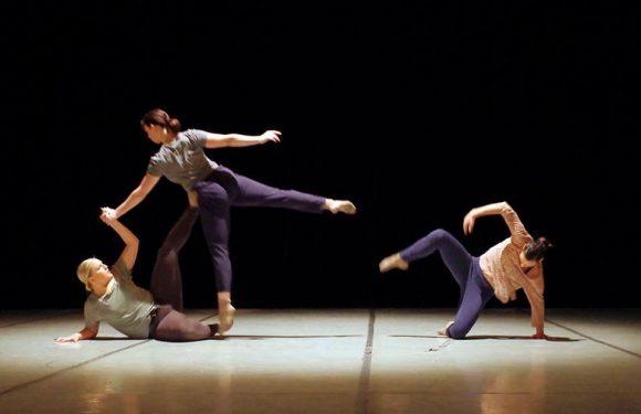 Culmina con éxito la XIV edición del Festival Internacional de Danza Contemporánea (EDANCO 2018